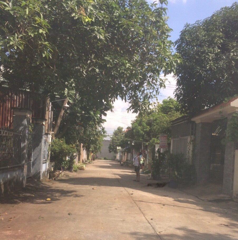 Bán đất ở Tp.Biên Hoà, Đồng Nai, lô đất biệt thự chính chủ
