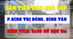 Tin mua bán nhà phường bình trị đông, bán nhà đất quận Bình Tân TPHCM – Đăng trên Thế Giới Nhà Đất 356