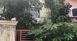 Mua bán nhà đất quận 8 tphcm giá rẻ: Bán nhà đường Dương Bá Trạc Quận 8 giá 6,3 tỷ hẻm 10m