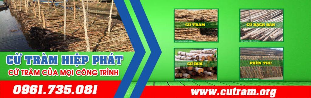 Công ty cừ tràm Hiệp Phát là đơn vị chuyên bán các loại cừ bạch đàn và cừ tràm lại TP.HCM và các tỉnh cận như Bình Dương, Đồng Nai, Long An, Tây Ninh,Tền Giang, Vũng Tàu…